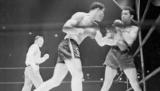 Чому бути чемпіоном світу недостатньо? Абсолютні чемпіони світу з боксу