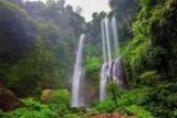 Кращі водоспади Балі: опис, фото, як дістатися?
