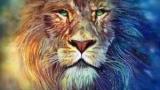 Знак зодіаку Лев: який камінь підходить, особливості характеру, талісмани і обереги