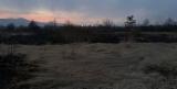 В Закарпатской области сгорела Долина нарциссов